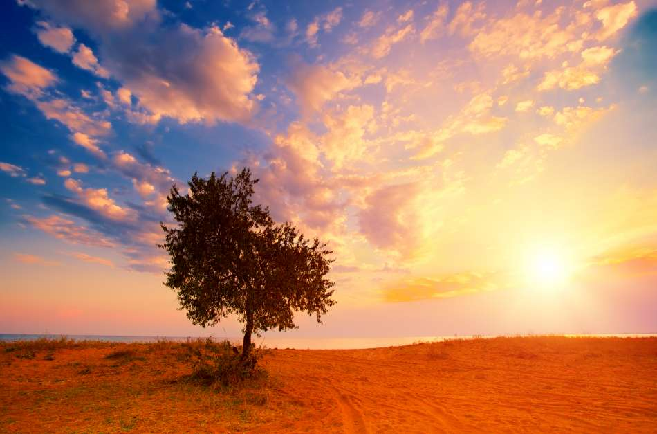 90 Mejores Frases Sobre El Mañana Expande Tu Mente